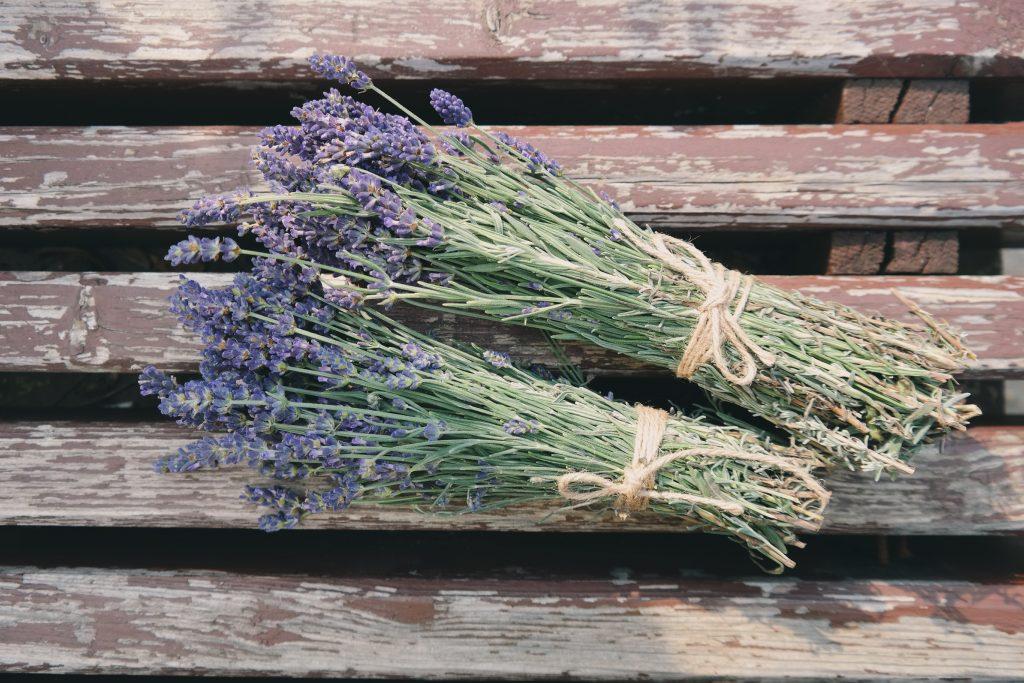 organic-lavender-bundle